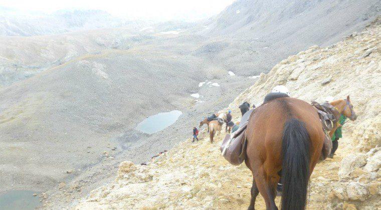 Gran Paradiso 2012: un'impresa alpinistica a cavallo