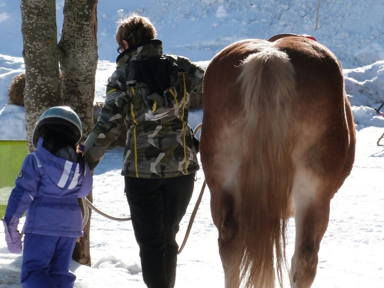 (Italiano) Corso Istruttore Pony