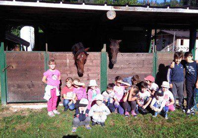 Corso Istruttore Pony