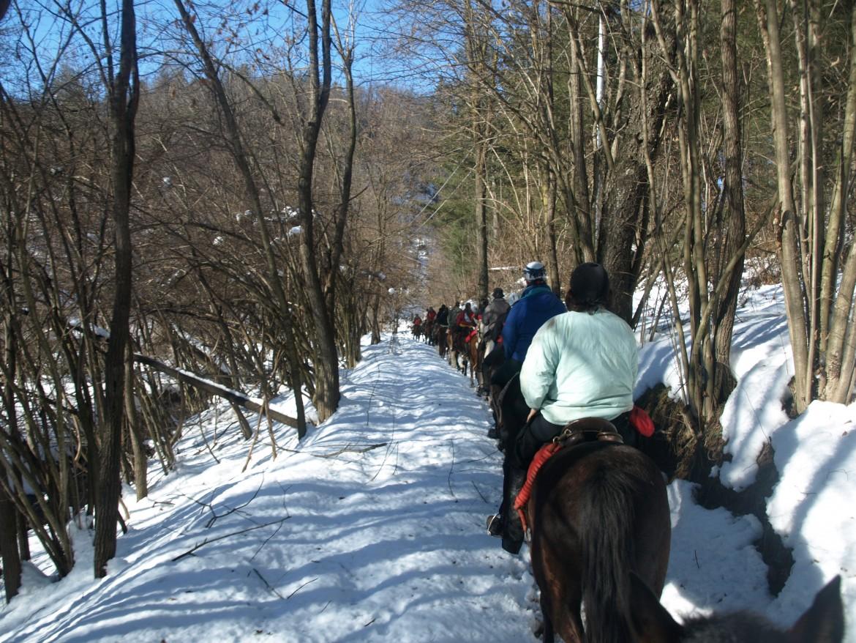 Trekking della Merla: emozioni d'inverno…in sella!