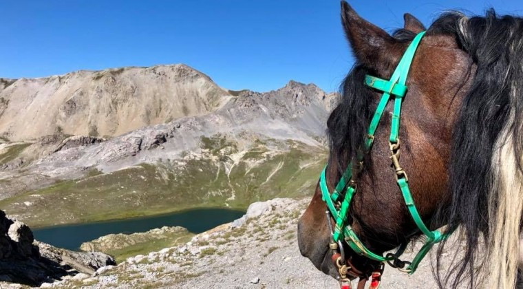 (Italiano) 23 marzo…riprendono a pieno regime le attività equestri!