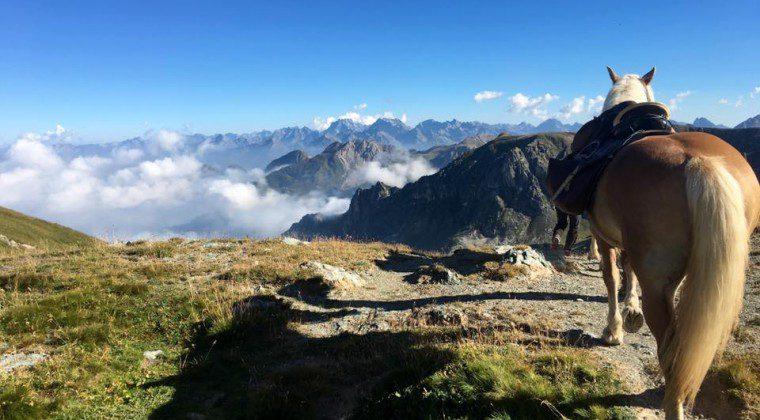 (Italiano) Roumiage: trekking tra le Alpi Provenzali