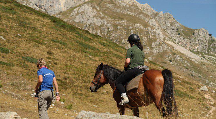Corso Naz.le Guida Equestre Ambientale 2°Livello – Modulo 1