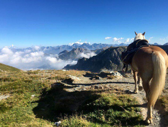Roumiage: trekking tra le Alpi Provenzali