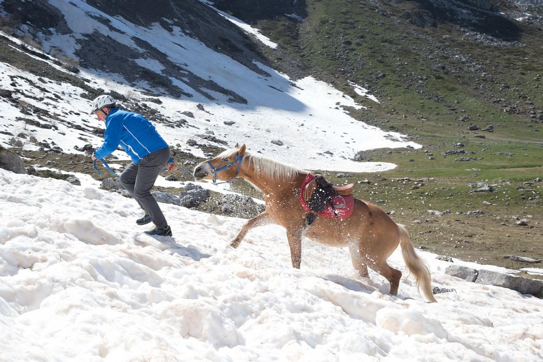 Corso Nazle Guide di 2° Livello – Modulo 1, Escursionismo avanzato