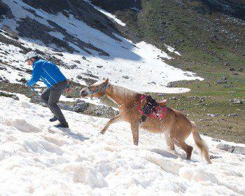 (Italiano) Corso Nazle Guide di 2° Livello – Modulo 1, Escursionismo avanzato